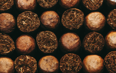 5 PREMIUM CUBAN CIGARS NOT NAMED COHIBA OR MONTECRISTO THAT YOU ABSOLUTELY MUST TRY